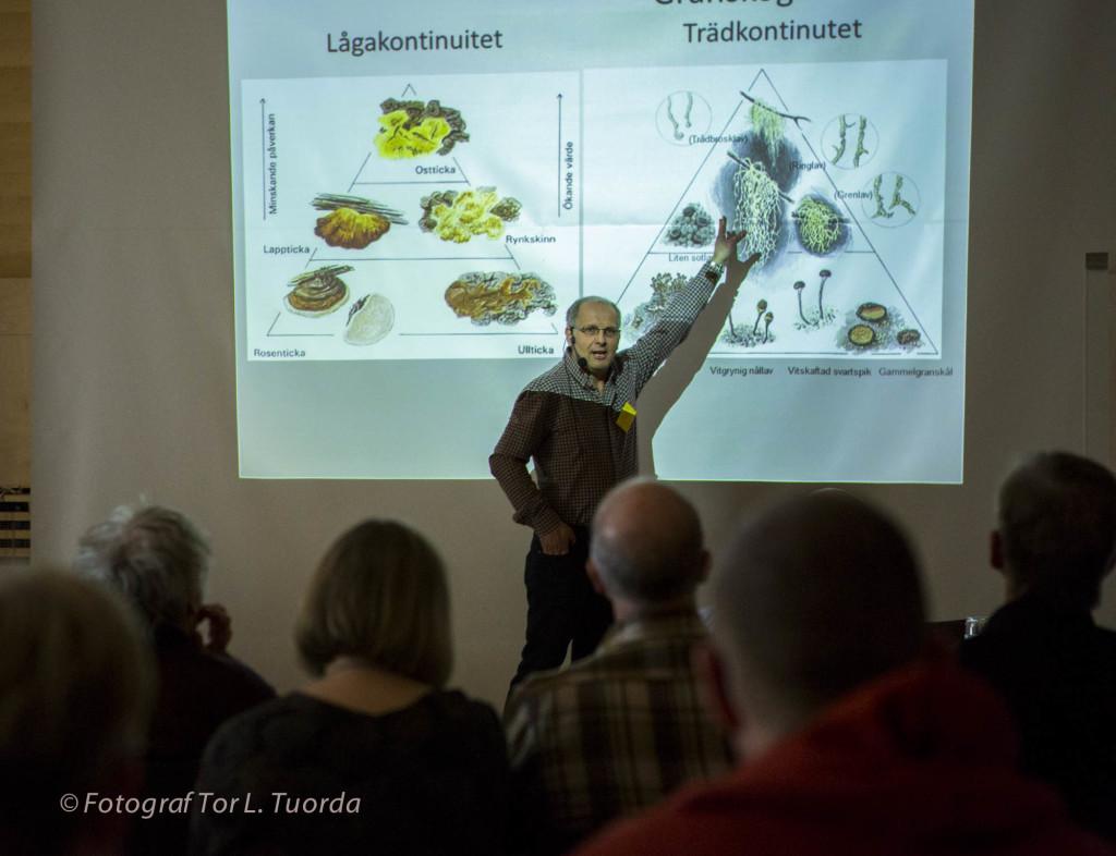 Mats berättar om värdepyramiden för granskogar. En revolutionerande metodik som han uppfunnit för att hitta och skydda gammelskogar. En metodik som blivit standard hos skogsbolag och myndigheter.